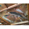 天井に描かれた鯉。気付く人は気付きます。