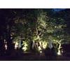 パーティー会場から見える夜の庭