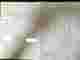 Qtuf7jpcmrtuvfnb52h8kalqdmb5210