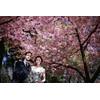 【Photo Wedding】ご希望のロケーションで楽しむフォトウェディング