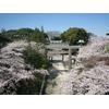 注目フェア【横濱和婚】神社挙式相談会@神社内記念館ロビー