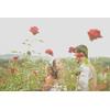 【春挙式希望のおふたりへ】バラ満開!ガーデンWD相談会